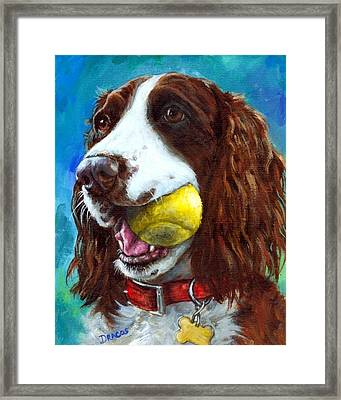 Liver English Springer Spaniel With Tennis Ball Framed Print by Dottie Dracos
