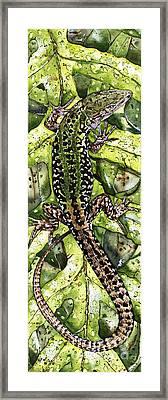 Lizard In Green Nature - Elena Yakubovich Framed Print by Elena Yakubovich