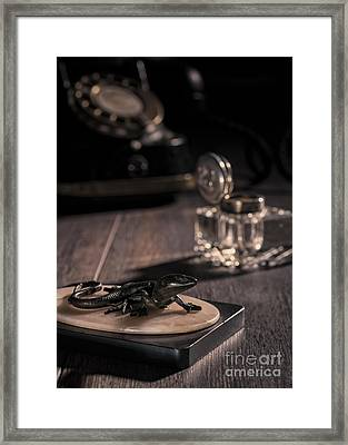 Lizard Paperweight Framed Print by Amanda And Christopher Elwell