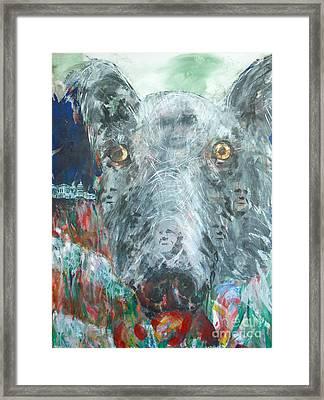 Lobby Dogs Framed Print by Thomas Dudas