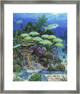 Lobster Feast Re0019 Framed Print by Carey Chen
