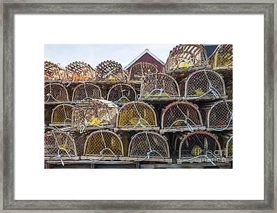 Lobster Traps Framed Print by Elena Elisseeva