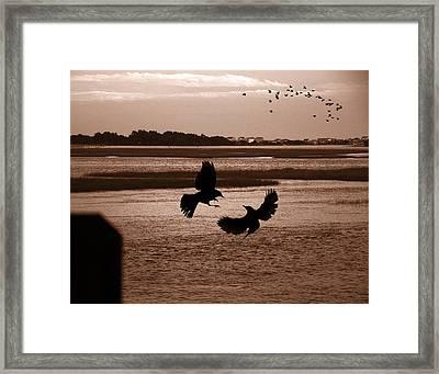 Lockwood Folly River Framed Print by Joseph Tese