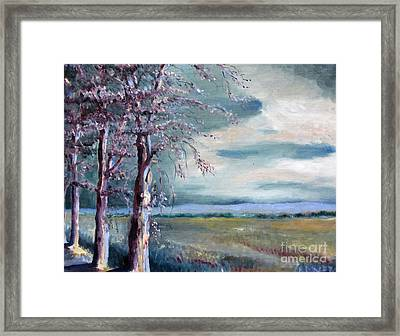 Locust Trees Framed Print by Rebecca Myers