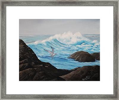 Lone Gull Framed Print by Wayne Toutaint