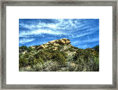 Lone Ranger Look Out Framed Print by Cindy Nunn