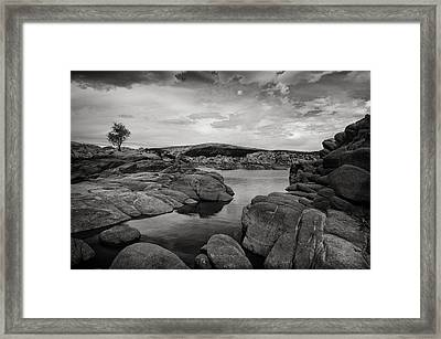 Lone Tree And Watson Lake Framed Print by Jesse Castellano