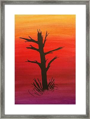Lone Tree Framed Print by Keith Nichols