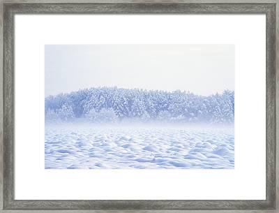 Loneliness In Winter Framed Print by Patrick Kessler