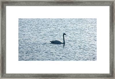 Loneliness Framed Print by Mario Perez