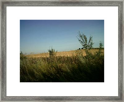 Lonely Field Framed Print by Andreea Alecu
