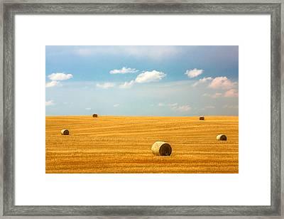 Lonely Fields Framed Print by Todd Klassy