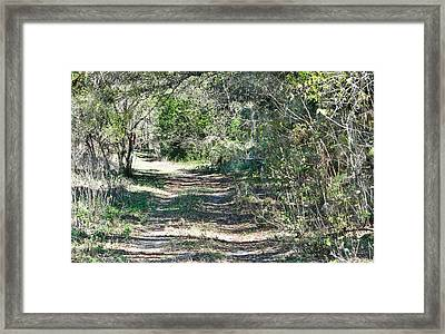 Lonely Road Framed Print by Dennis Dugan