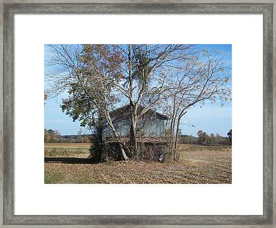 Lonesome  Framed Print by Preston Gregory