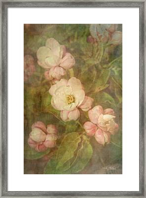 Long Ago Under The Apple Tree Framed Print by Mary Machare