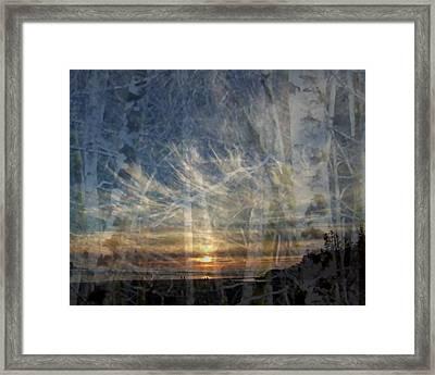 Long Beach Alders Framed Print by Lyn  Perry