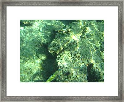 Long Boat Tour - Phi Phi Island - 011380 Framed Print by DC Photographer