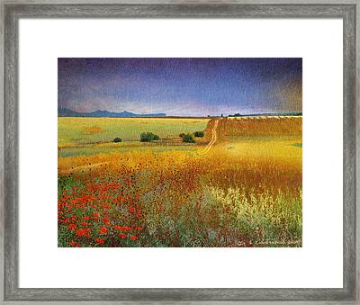 Long Road Late Summer Framed Print by R christopher Vest