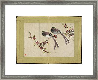 Long-tailed Birds On Plum Tree Branch Framed Print by British Library