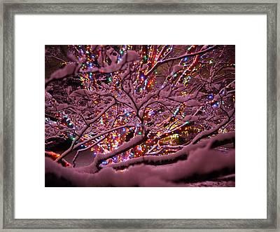Longwood Lights 1 Framed Print by Richard Reeve