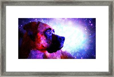 Look To The Stars Framed Print by Kaylee Vergilio