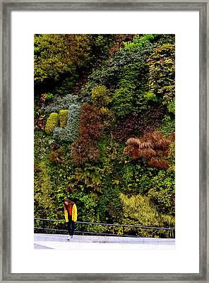Look Up Framed Print by Regina Avila