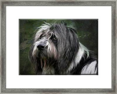 Looking A Little Sad Framed Print by Gun Legler