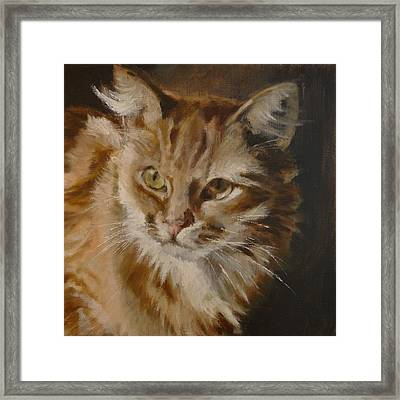 Looking Back Cat Framed Print by Veronica Coulston