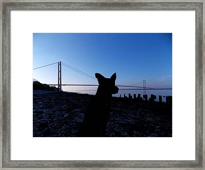 Looking Both Way's Framed Print by Chris Cox