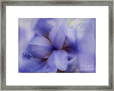 Looking Down On Creation Framed Print by Janice Rae Pariza
