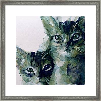 Looking For A Home Framed Print by Paul Lovering