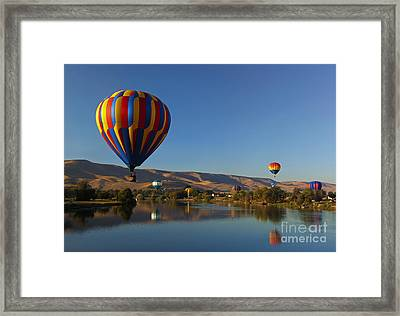Looking For A Place To Land Framed Print by Mike  Dawson