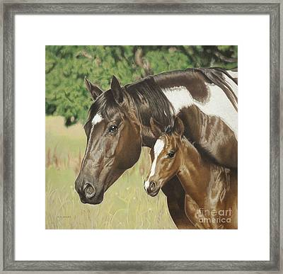 Looking Out For Me Framed Print by Helen Bailey