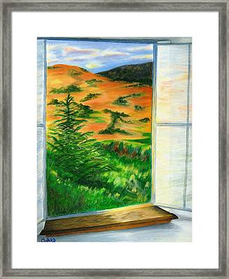 Looking Out The Window Framed Print by Colleen Ward