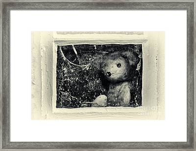 Looking Out Framed Print by Tim Gainey