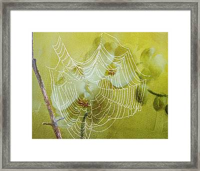 Looking Through The Web Flower Framed Print by J Larry Walker