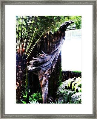 Looking Through The Window Of Extinction Framed Print by Steve Taylor