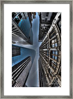 Looking Up Framed Print by Mark Ayzenberg