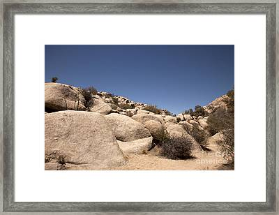 Looks Like It Was Planned Framed Print by Amanda Barcon