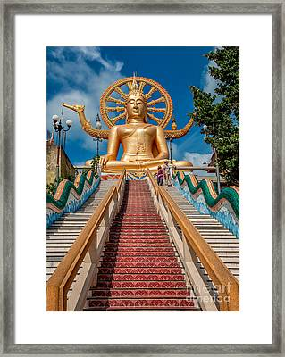 Lord Buddha Framed Print by Adrian Evans