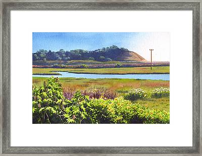 Los Penasquitos Creek Torrey Pines Framed Print by Mary Helmreich
