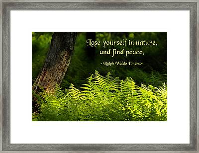 Lose Yourself In Nature Framed Print by Mike Flynn