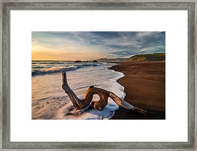 Lost Coast Driftwood Framed Print by Leland D Howard