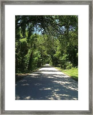 Lost In Marion County Florida Framed Print by Lisa Piper Menkin Stegeman