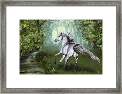 Lost In The Forest Framed Print by Kate Black