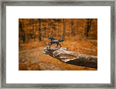 Lost Toy In The Woods Framed Print by Jeff  Gettis