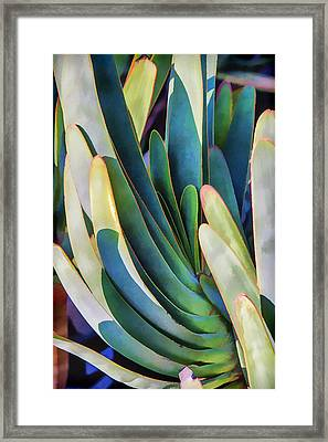 Lots Of Fingers Framed Print by Scott Campbell