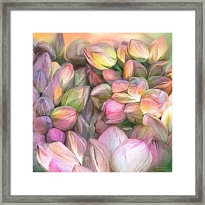 Lotus Bud Moods Framed Print by Carol Cavalaris
