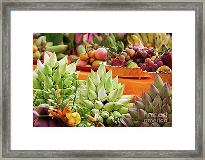 Lotus Buds 02 Framed Print by Rick Piper Photography