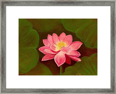 Lotus Flower Framed Print by Anastasiya Malakhova